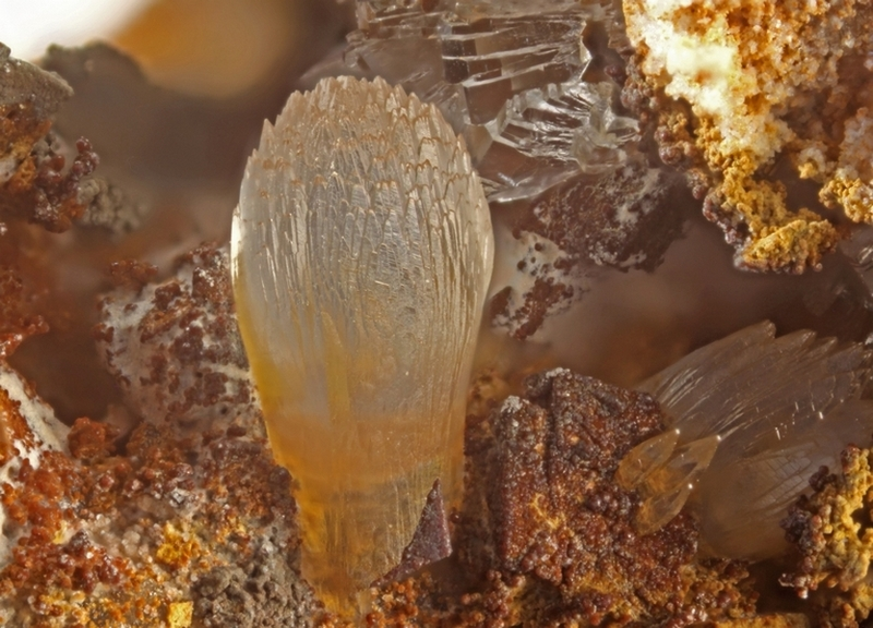 smithsonite 9066,champ 3mm.jpg