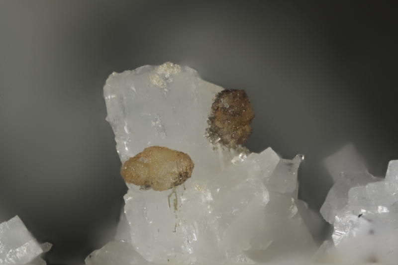 197043-calcite sur albite-GB-chp 2,4mm.jpg